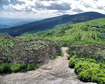 Hiking Blue Ridge Mountains