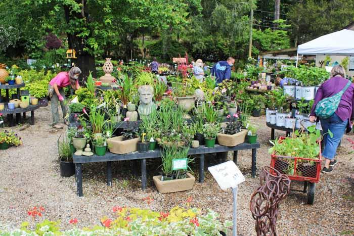 Garden Jubilee Hendersonville