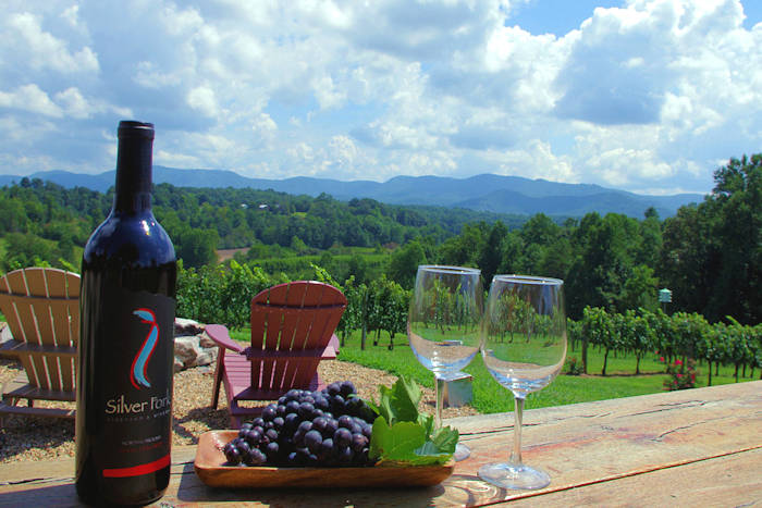 Top 15 Wineries near Asheville & Asheville NC Wineries u0026 Winery Tours