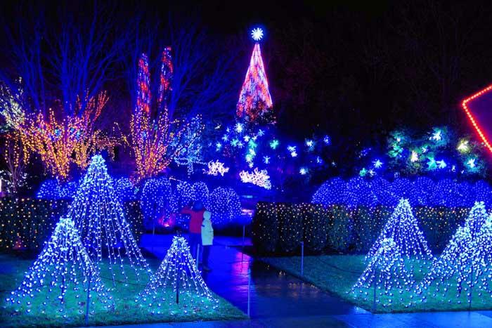 Christmas Lights Asheville