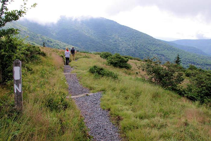 Appalachian Trail Roan Mountain