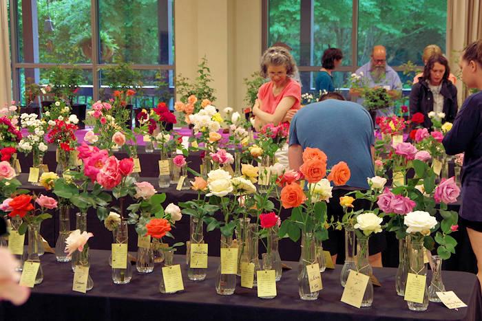 NC Arboretum Spring Flower Shows