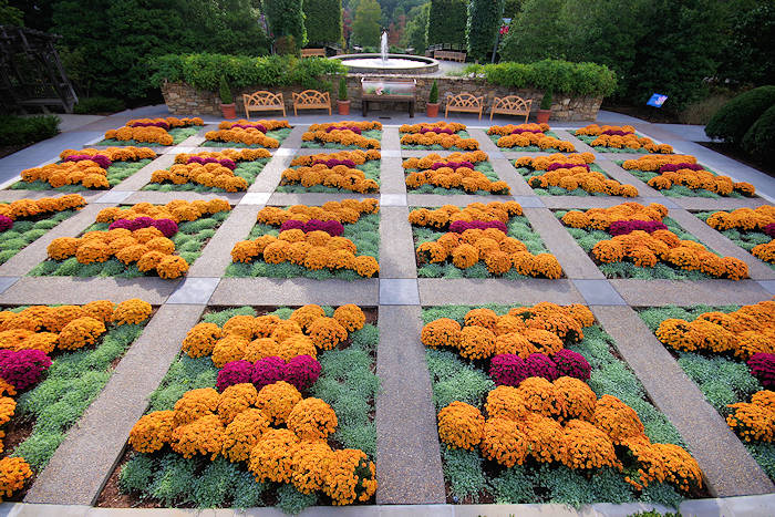 NC Arboretum Fall Quilt Garden