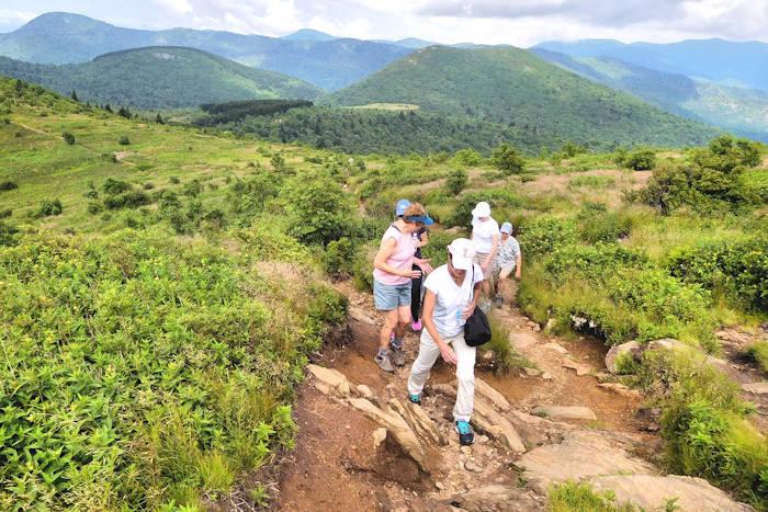 Top 20 Asheville Spas & Holistic Health