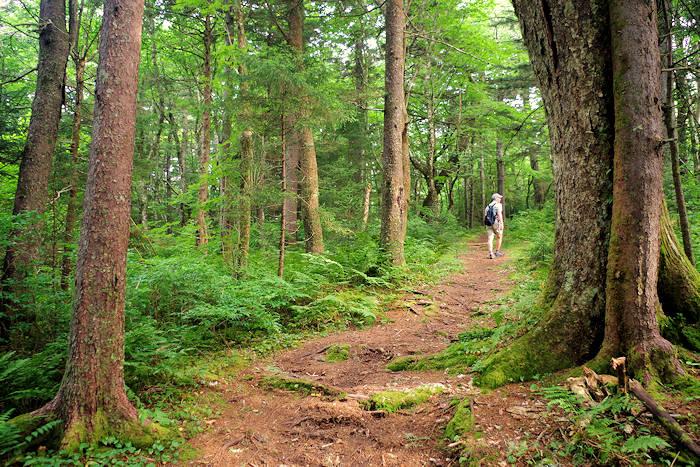 Big Butt Trail NC