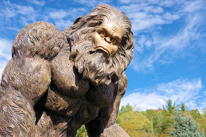 Bigfoot Festival, Marion NC