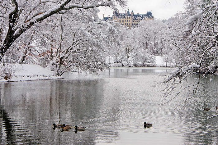 Biltmore House Winter Tours