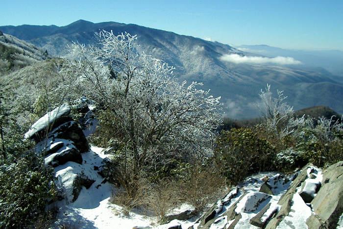 Mt Cammerer NC