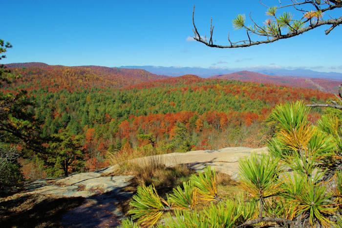 Cedar Rock, DuPont State Forest