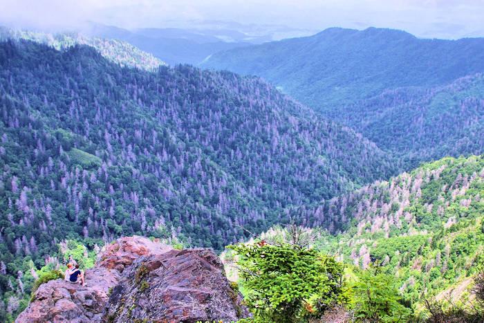Charlies Bunion Hike, Great Smoky Mountains