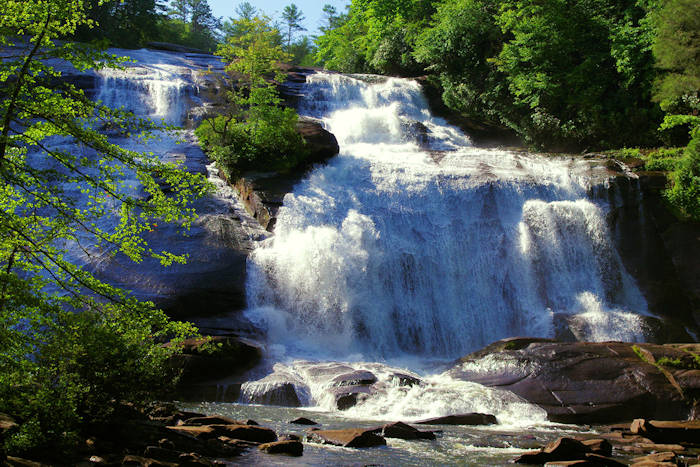 DuPont State Forest NC