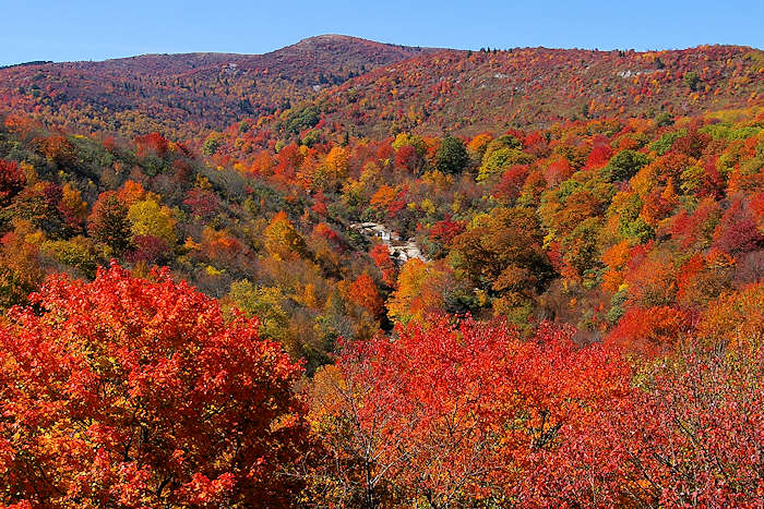 Blue Ridge Mountains NC Fall Color