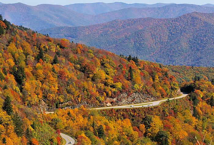 Fall Color Forecast Asheville