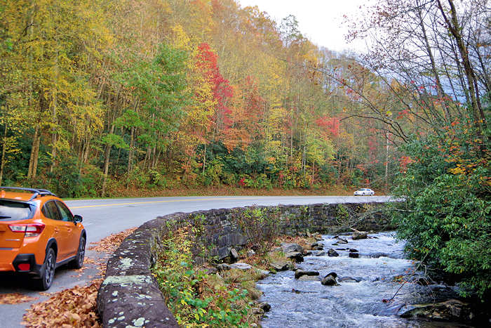 Great Smoky Mountains Scenic Drives