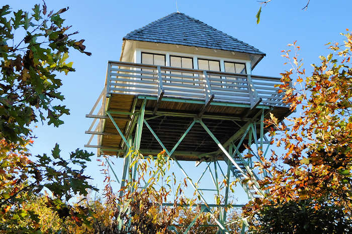 Green Knob Lookout Tower, NC
