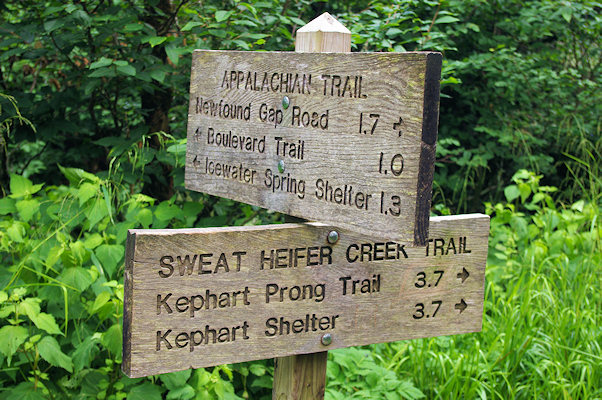 Guided Group Hikes