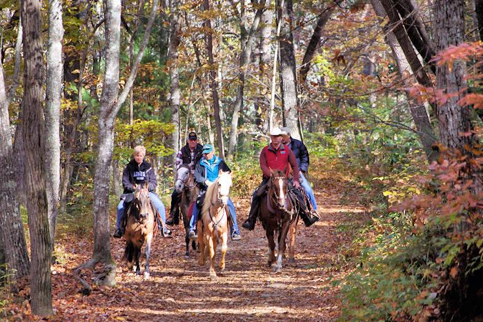 Horseback Riding Asheville