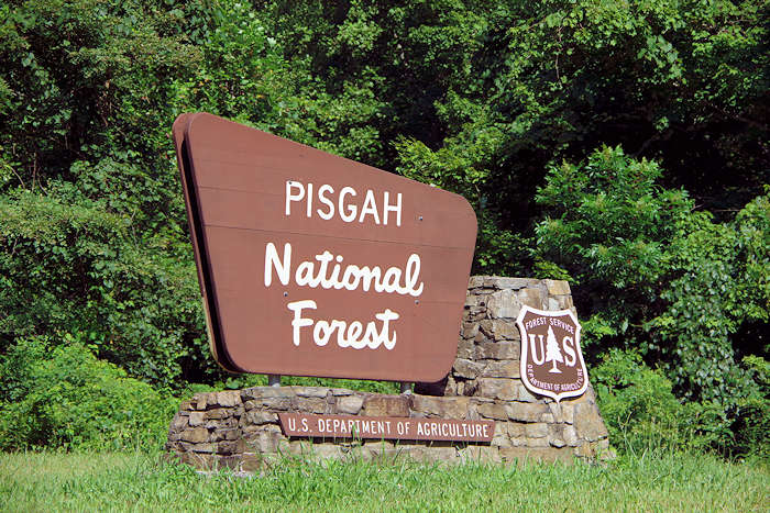 Pisgah National Forest, North Carolina
