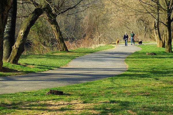 Asheville Public Parks