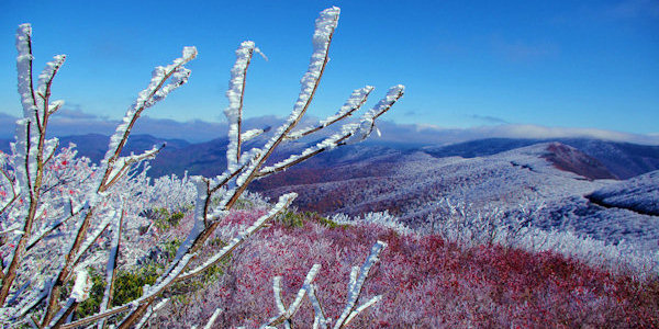 Rime Ice Blue Ridge Parkway