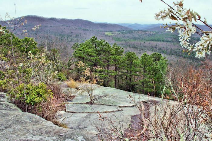 DuPont State Forest Waterfall Hike on