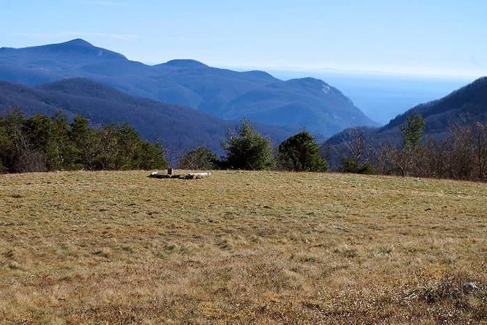 Trombatore Trail NC