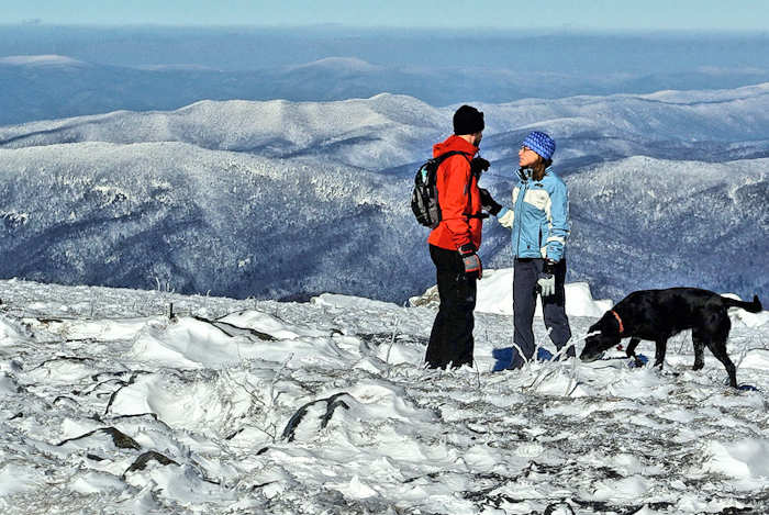Winter Things to Do in Asheville Mountains