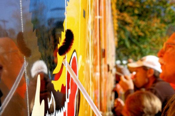Woolly Worm Festival, Banner Elk