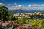Asheville Real Estate Overview