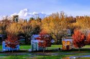 The Meadows Tiny Home Community Flat Rock