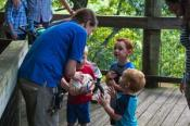 WNC Nature Center Birthday Parties Asheville