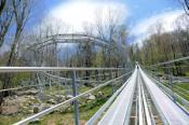 Wilderness Run Alpine Coaster