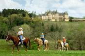Biltmore Horseback Riding