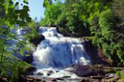DuPont Forest Waterfalls