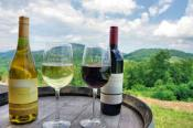 Hendersonville Wine Country