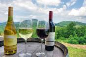 Hendersonville Wine Country