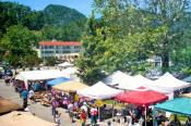 Lake Lure Arts Festival