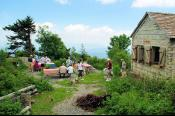 Mt Mitchell Picnic