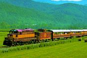 Train Excursion
