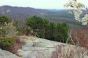 DuPont Forest Stone Mountain