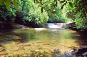 Whaleback Swimming Hole, Pisgah National Forest