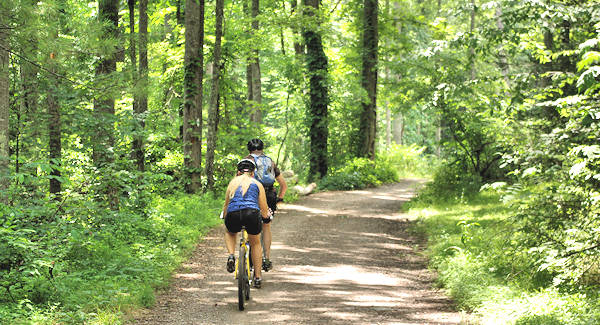 Bent Creek Mountain Biking