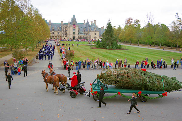 Biltmore House Christmas Tree Arrival