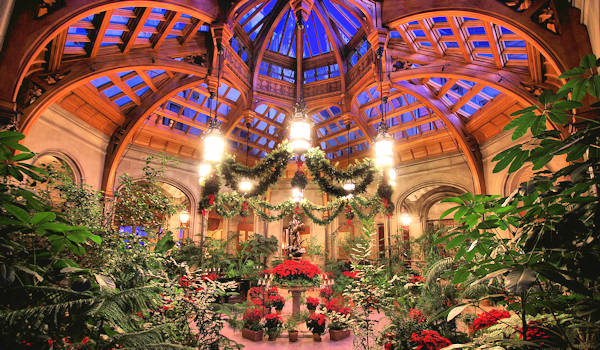 Biltmore House Christmas, Winter Garden