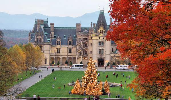 Biltmore Christmas Tree