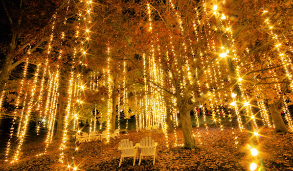 Lights at Antler Hill Village Biltmore Estate