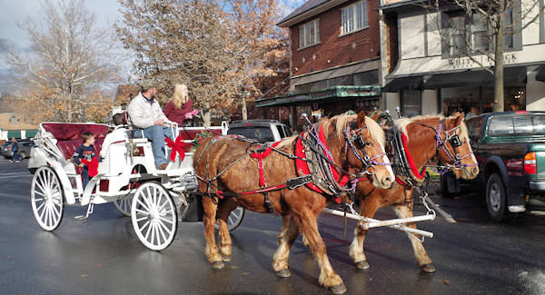 Biltmore Village Carriage Ride Christmas
