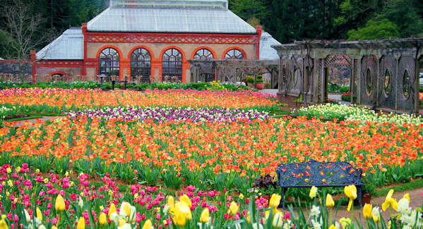 Biltmore walled Garden