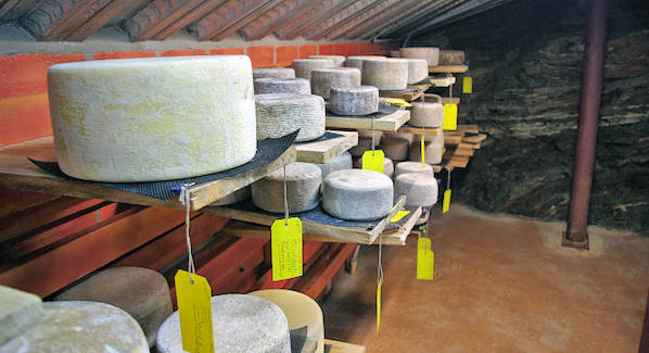 Blue Ridge Mountain Cheese Cave