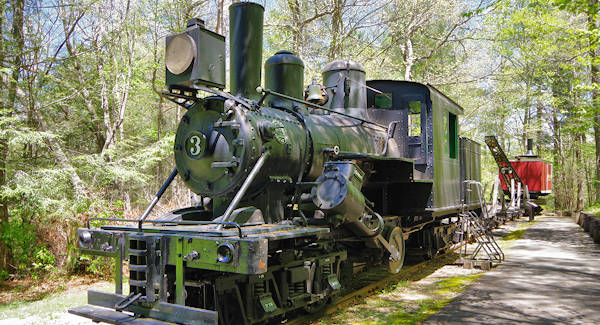 Cradle of Forestry Train